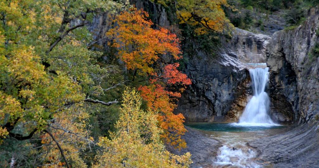 el entorno natural